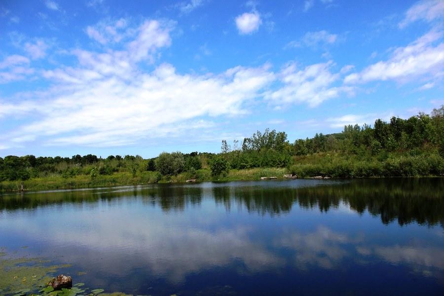 Rouge Park Hiking Day Trip (14 Km) #Parkbus: Sat, Aug 25