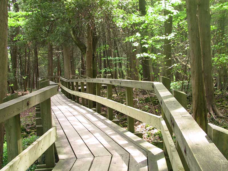 The boardwalk around Crawford Lake
