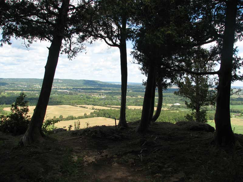 The view from Mount Nemo