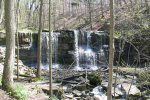 terace-creek-falls