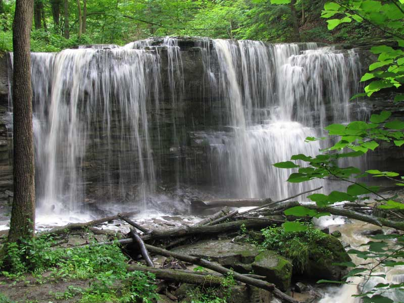 Terrace Creek Falls