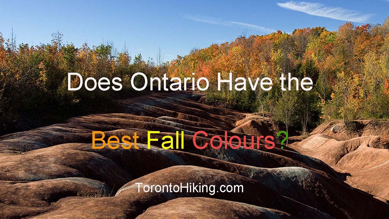 FALL COLOURS OntarioBest