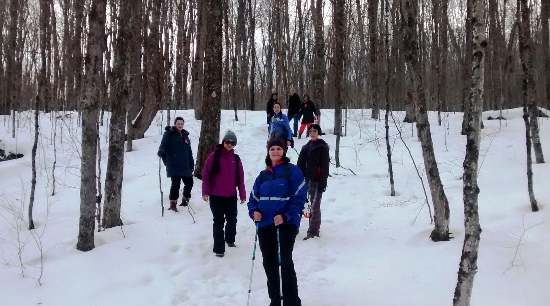 Arrowhead Prov Park #snowshoeing photos @Parkbus @OntarioParks #TOhiking
