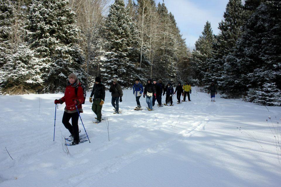 SIGN UPS CLOSED: Arrowhead Pr Park Snowshoeing Day TRIP II #Parkbus (Bus Ride Incl): Sat, Feb 24