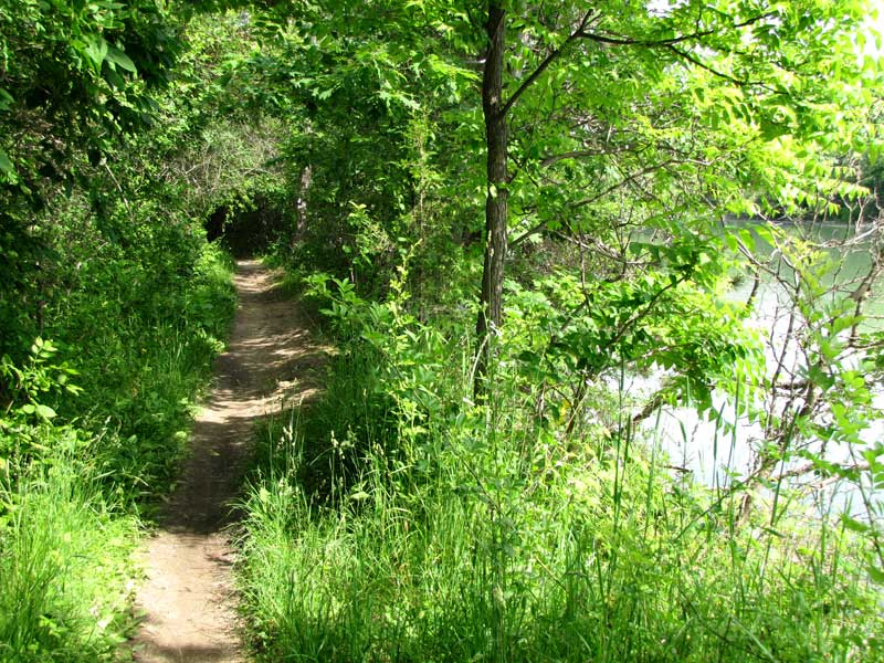 The trail along the Lake Moodie channel